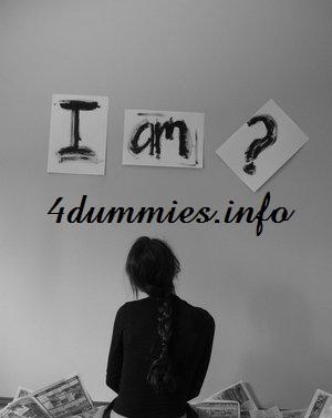 4dummies.info